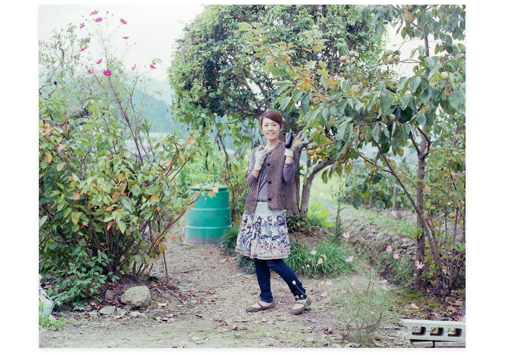 20111011_丹波篠山黒豆を穫る05b