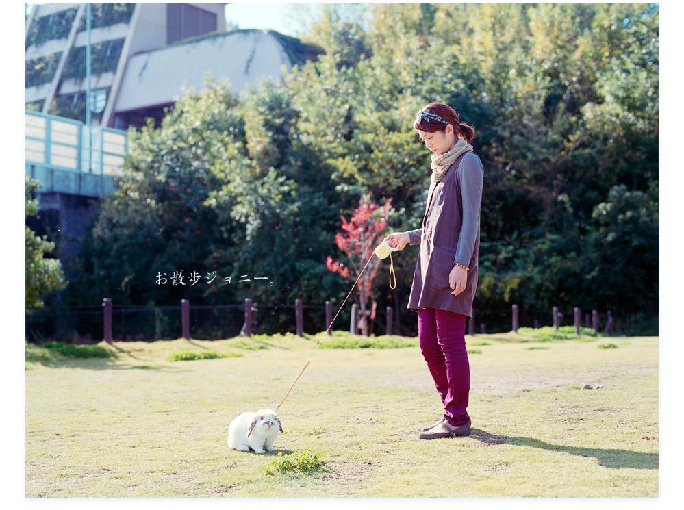 20111216_お散歩ジョニーa