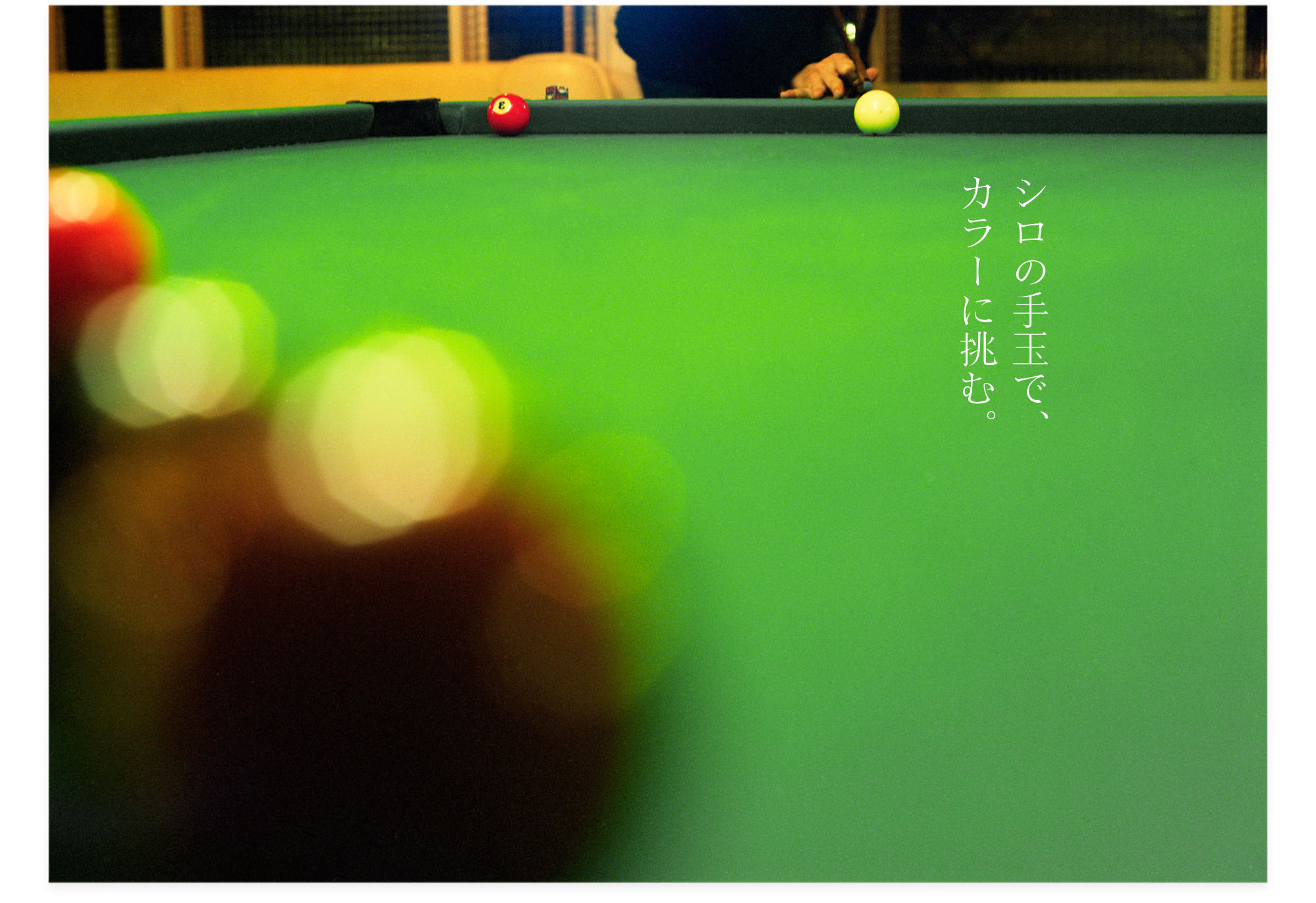 201301113_シロの手玉でカラーに挑む